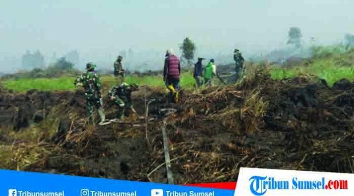 Titik Api Baru Bermunculan di Bengkalis Riau