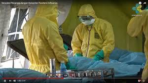 pandemi influenza