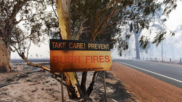 Kota Sydney dilanda gelombang panas
