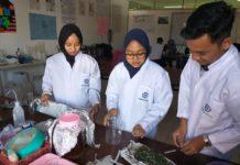 Mahasiswa Farmasi UM Bandung Formulasikan Daun Cincau Hijau Sebagai Kapsul Anti Inflamasi