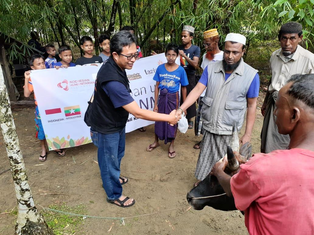 Lazismu Sampaikan Amanah Kurban Di Myanmar 15 Ekor Lembu Di