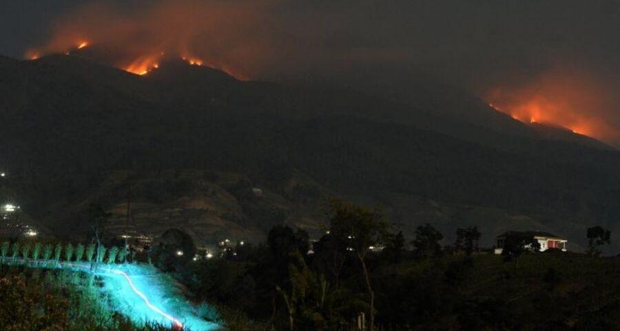 Hutan merbabu terbakar