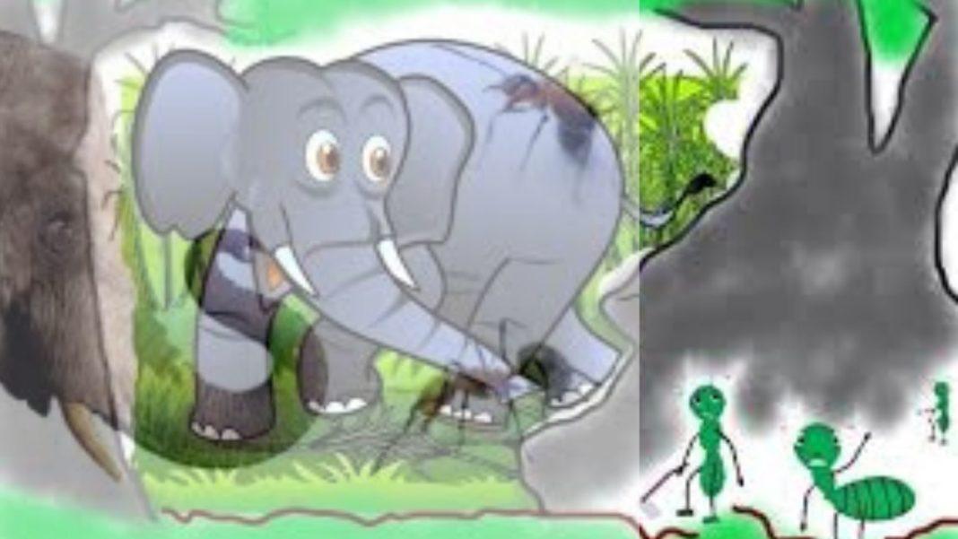 semut dan gajah (2)