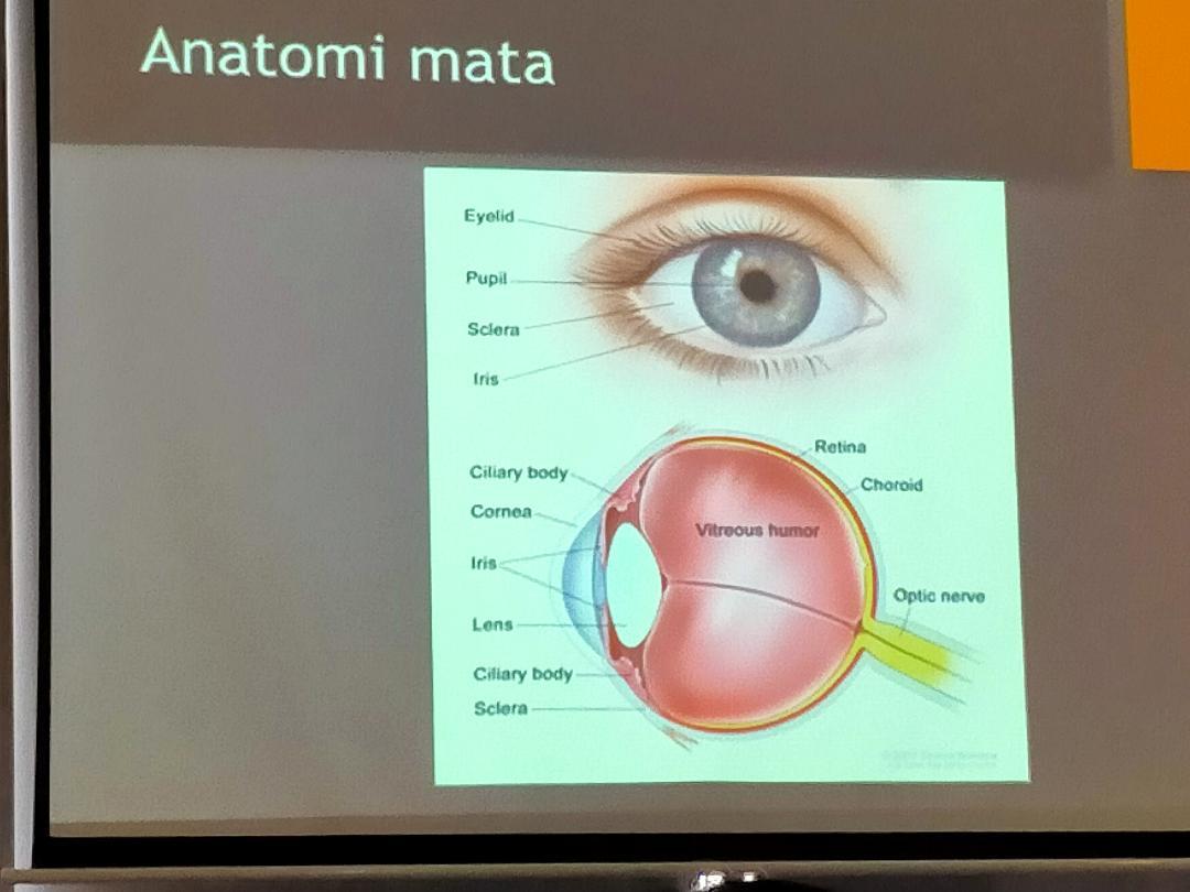 Tawarkan Teknologi Mutakhir KMN EyeCare Jadi Rujukan