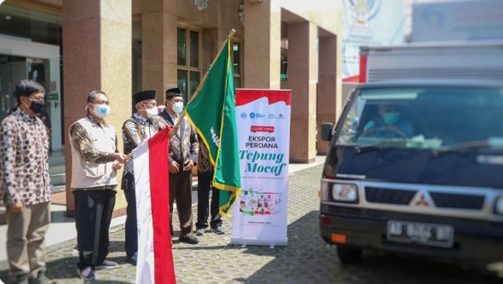 Muhammadiyah Ekspor Tepung Mocaf Ke Inggris, Yogyakarta, Kamis (8/4/2021).